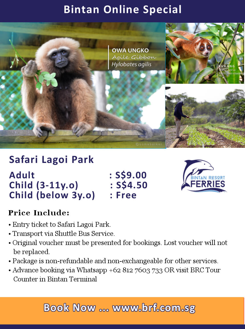 Safari Lagoi Park Online Deal