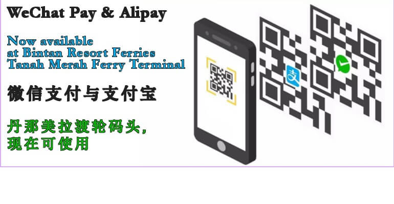 We Chat & Alipay2